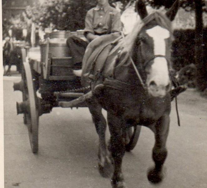 Theo Nahuis op paard en wagen