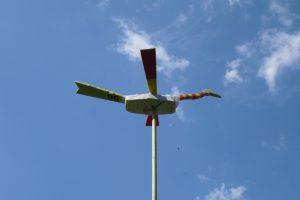 Vogel gooien - foto vogel in lucht
